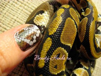 Маникюр кожа рептилии